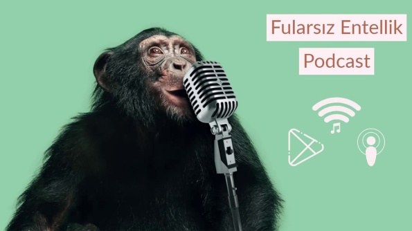 fularsiz_entellik